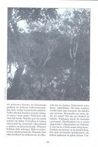 ZŻ nr 19, str 32