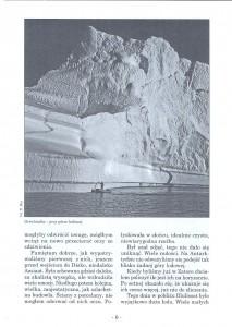 ZŻ nr 19, str 6