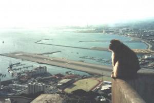 Gibraltar, widok na lotnisko. Fot. W. Jacobson
